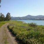 Camino primaveral y Embalse